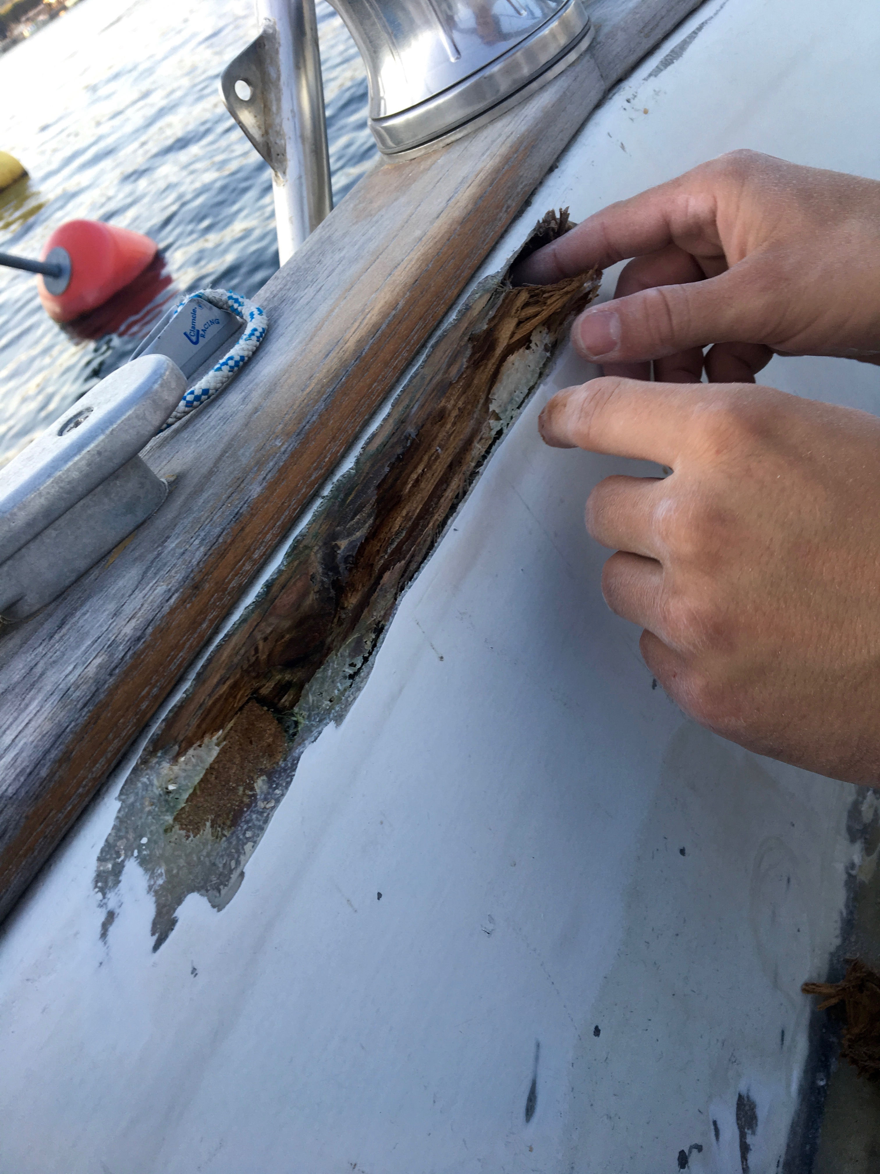 plastic crack with wet and rotten wood inside
